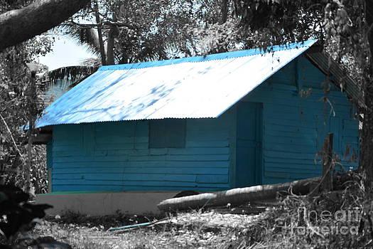 Blue House  by Bobby Mandal
