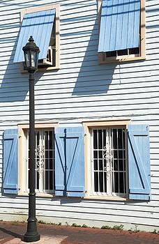 Ramunas Bruzas - Blue House