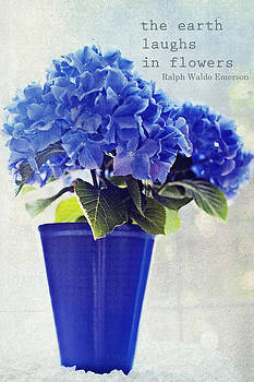 Blue Hydrangea by Whimsy Canvas
