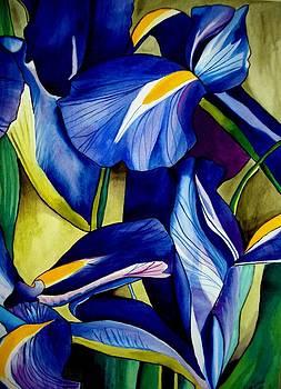 Blue Iris by Sacha Grossel