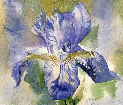 Alfred Ng - blue iris watercolor