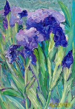 Blue Irises by Betty McGlamery