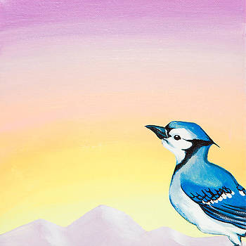 Blue Jay Sunrise by Emily Brantley