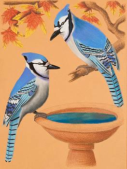 Jeanette K - Blue Jays in Fall