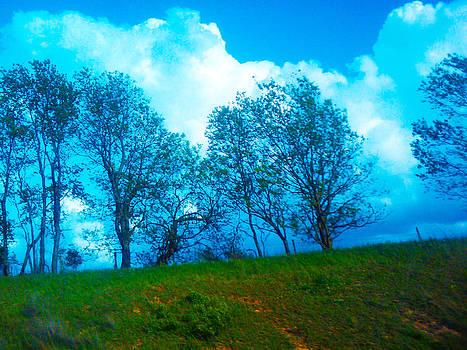 Blue Landscape by Seay Harshaw Delgado