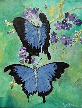 Blue Love by Connie Rowsell