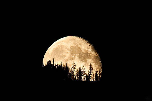 Blue Moon over the Swan Mountains by Diana Marcoux