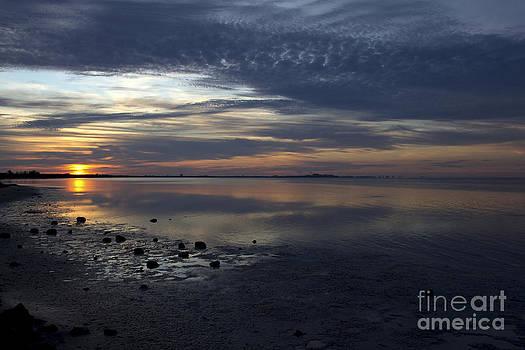 Blue Morning  by Meg Rousher