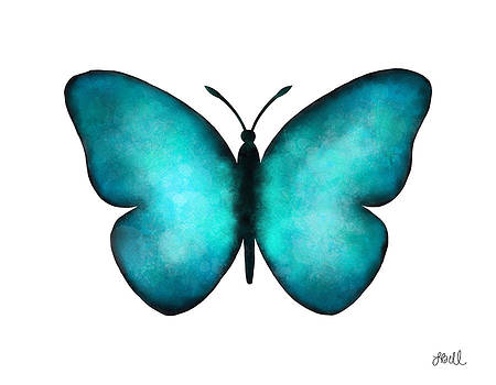 Blue Morpho Butterfly by Laura Bell