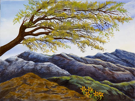Blue Mountains by Susan Culver