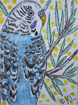 Blue Parakeet by Kathy Marrs Chandler