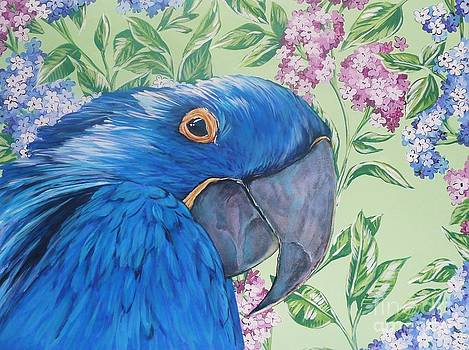 Blue Parrot by Jana Furzer