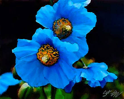 Shere Crossman - Blue Poppies