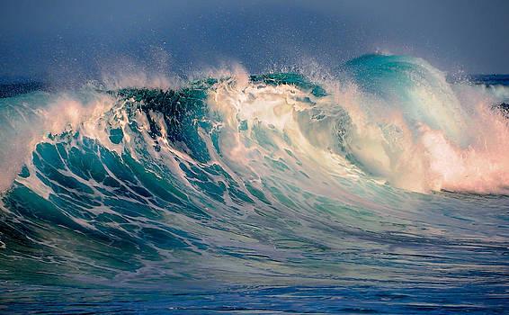 Jenny Rainbow - Blue Power. Indian Ocean