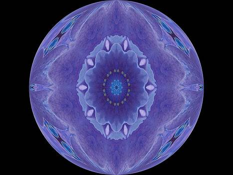 Blue Purple Flower Ball by Annette Allman