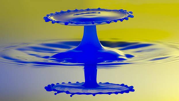 Nick Field - Blue Reflections