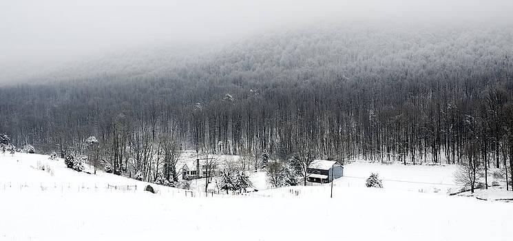 Blue Ridge Homestead by Greg Reed
