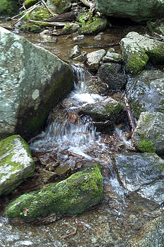 Blue Ridge Mountain Stream 5 by Kelly Youngblood