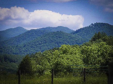 Blue Ridge Mountains by Robert J Andler