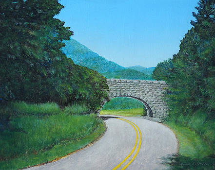 Blue Ridge Parkway 117A South by Kenneth Stockton