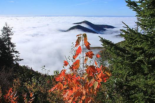 Blue Ridge Parkway near the Devil's Courthouse by Mountains to the Sea Photo