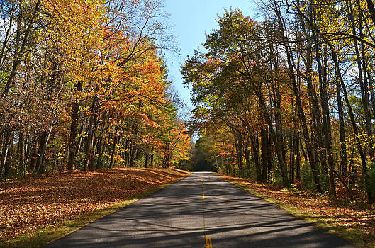 Blue Ridge Parkway Ride by Cecile Brion