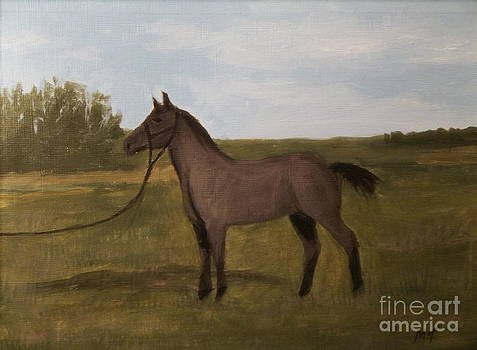 Blue Roan by Michelle Treanor