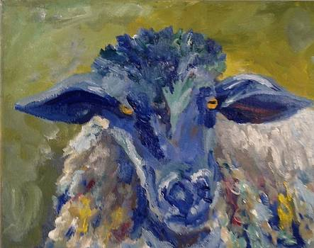 Blue sheep by Susan Hanning
