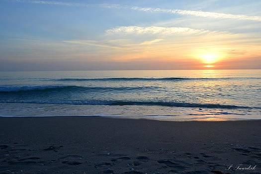 Patricia Twardzik - Blue Skies at Sunset