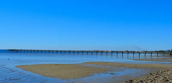 Patricia Twardzik - Blue Skies Over the Harbor