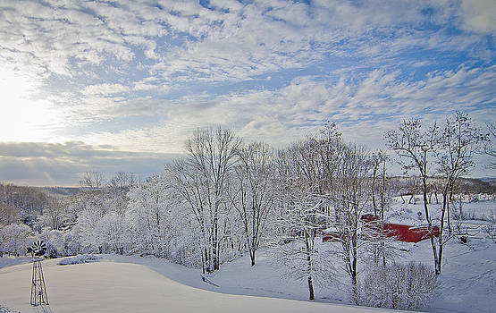 Blue Skies over the Snowy Day by Shirley Tinkham