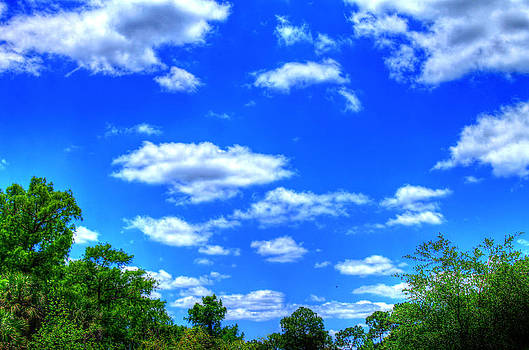 Blue skies by Vanessa Parent
