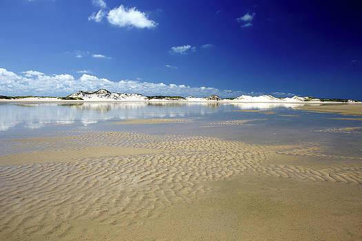 Blue Sky Over Sandy Coastal Beach by David Santiago Garcia