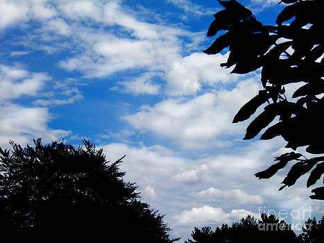 Blue Sky by Simonne Mina