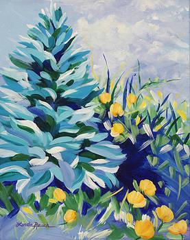 Blue Spruce by Linda Rauch