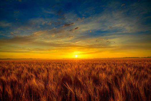 Blue sunrise by  Caleb McGinn