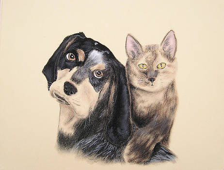 Jeanette K - Blue Tick Hound and Calico Cat