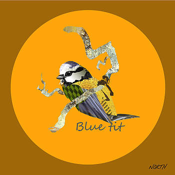 Blue-tit  by Kenneth North