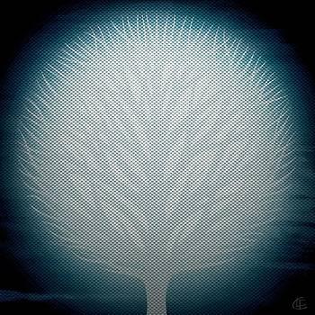 Blue Too by Cynthia Lund Torroll