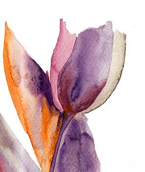 Blue Tulip flower by Regina Jershova