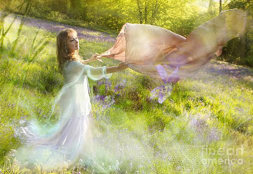 Angel  Tarantella - Bluebell Fairy