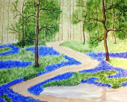 Bluebell Woods by Sandy Wager