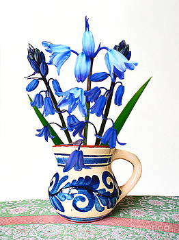 Bluebells in an Old Jug by Bishopston Fine Art