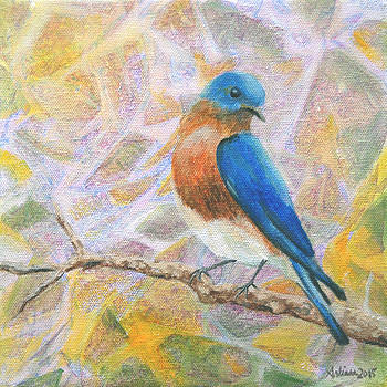 Bluebird - Birds in the Wild by Arlissa Vaughn