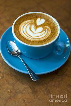 Rafael Macia - Bluebird Coffee NYC