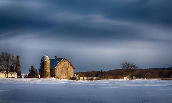 Melinda Martin - Bluebird Farm
