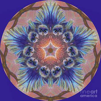 Bluebird Kaleidoscope by Jennifer Reitmeyer