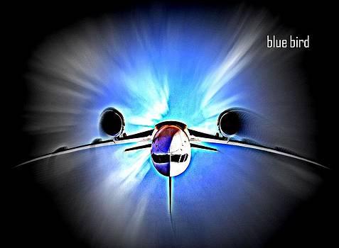 Bluebird by  art I FABRY
