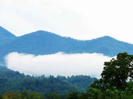 Blueridge Mountain Splendor by Ella Char