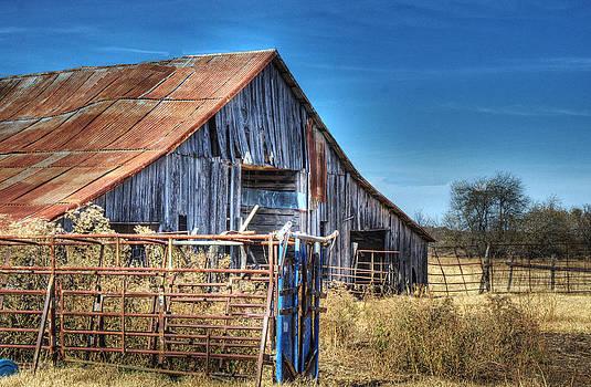 Lisa Moore - Bluff Barn II